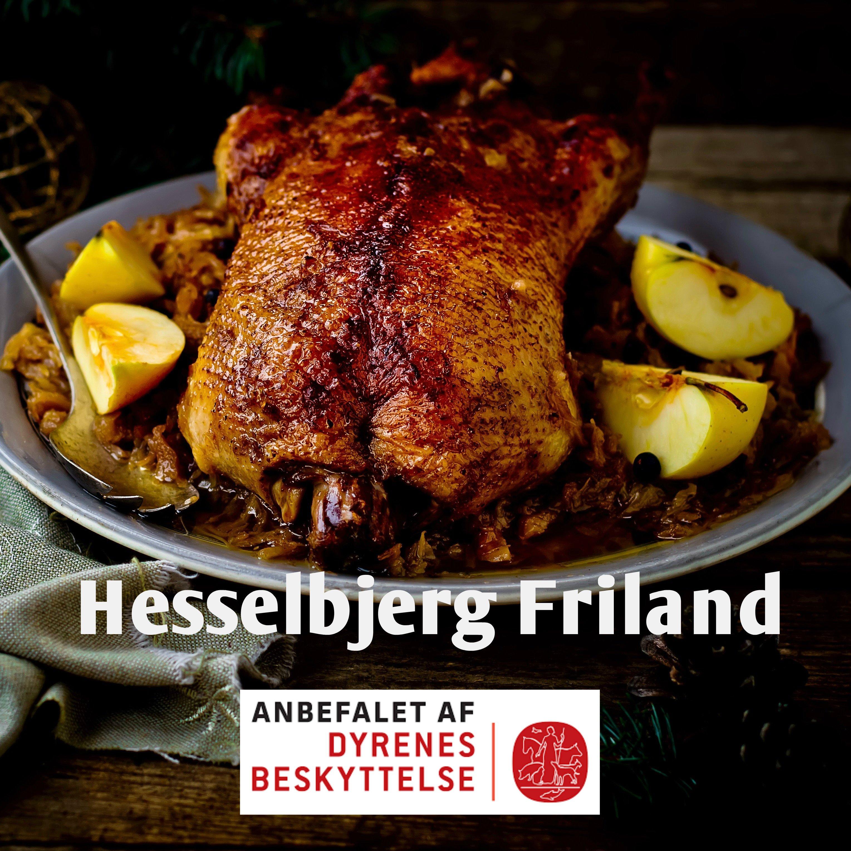Frilands And fra Hesselbjerg